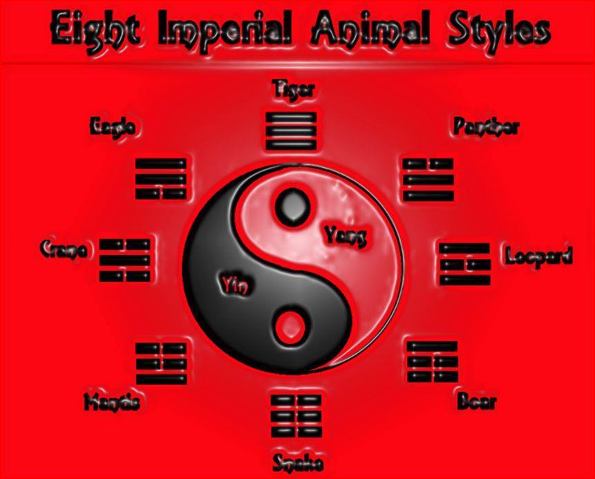 Imperial Combat Arts - Denver Martial Arts